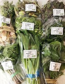 遠藤商店の山菜.jpg